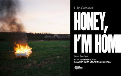 """Izložba """"Honey, I'm home"""" Luke Cvetkovića u Galeriji Doma omladine Beograda"""